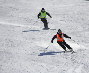 Skiier and Guide Carving